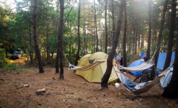 Дърво падна върху палатка в района на Рилския манастир и