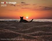 Съвети и арт вдъхновение от участниците във фотографския конкурс Huawei Next Image Awards 2020