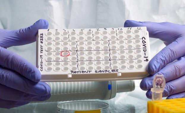 Над 18 милиона заразени с COVID-19 по света