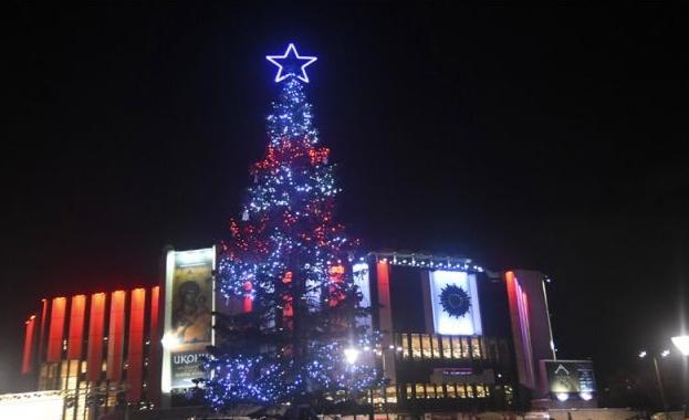 Тази вечер Светва коледната елха в София