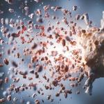 Изненадващ фактор срещу имунитета посочи лекар