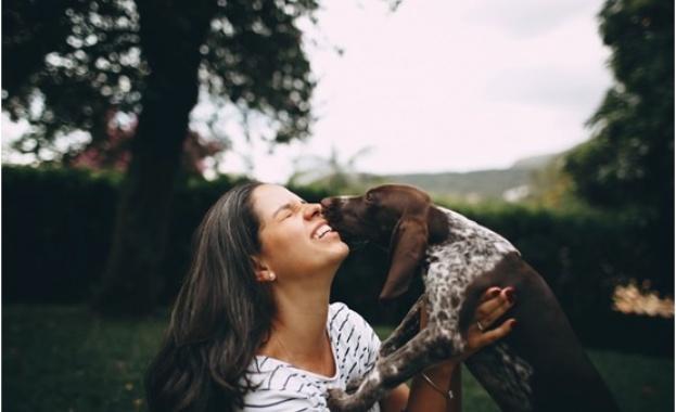 10 любопитни неща, които не знаете за Вашето куче
