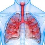 5 май - световен ден за борба с астмата