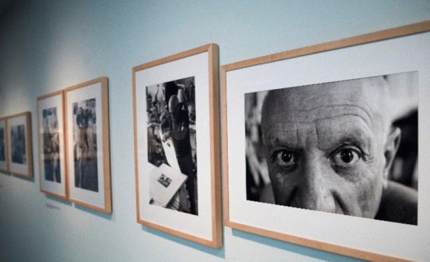 Картина на Пабло Пикасо беше продадена на търг в Ню