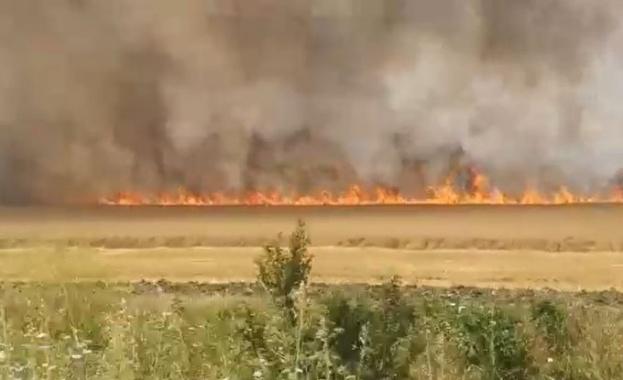 Земеделец предизвикал горските пожари в Сакар