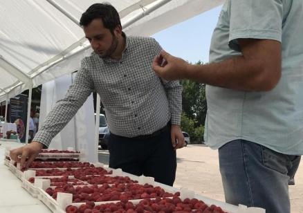 МЗХГ ще продължи да създава политики  в интерес на малинопроизводителите