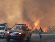 Потушен е големият пожар край кюстендилското Долно село