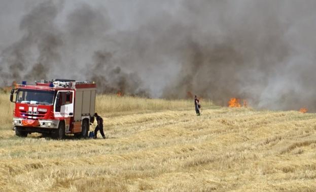 Двама горски служители са загинали при гасенето на пожар край